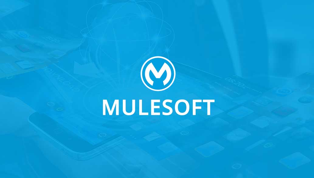 MuleSoft Partner, Develpment and Support